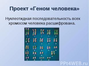 Нуклеотидная последовательность всех хромосом человека расшифрована. Нуклеотидна
