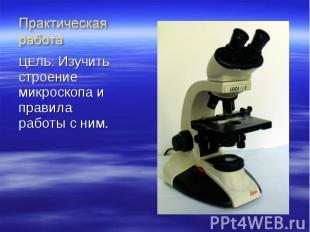 ЦЕЛЬ: Изучить строение микроскопа и правила работы с ним. ЦЕЛЬ: Изучить строение