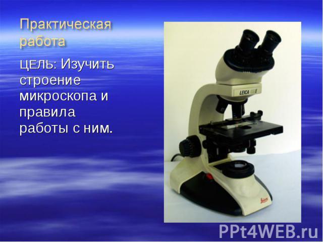 ЦЕЛЬ: Изучить строение микроскопа и правила работы с ним. ЦЕЛЬ: Изучить строение микроскопа и правила работы с ним.