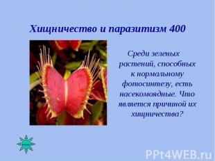 Среди зеленых растений, способных к нормальному фотосинтезу, есть насекомоядные.
