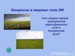 Что общего между агроценозом картофельного поля и биоценозом луга? Что общего ме