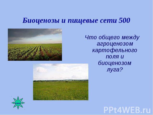 Что общего между агроценозом картофельного поля и биоценозом луга? Что общего между агроценозом картофельного поля и биоценозом луга?