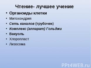 Органоиды клетки Органоиды клетки Митохондрия Сеть каналов (трубочек) Комплекс (