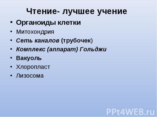 Органоиды клетки Органоиды клетки Митохондрия Сеть каналов (трубочек) Комплекс (аппарат) Гольджи Вакуоль Хлоропласт Лизосома