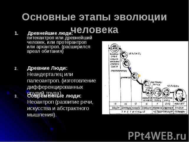 Основные этапы эволюции человека 1. Древнейшие люди: питекантроп или древнейший человек, или протерантроп или архантроп. (расширился ареал обитания)