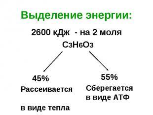 Выделение энергии: 2600 кДж - на 2 моля С3Н6О3
