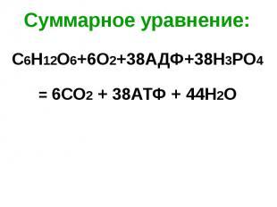 Суммарное уравнение: