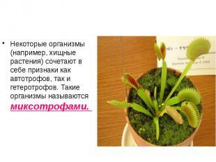 Некоторые организмы (например, хищные растения) сочетают в себе признаки как авт
