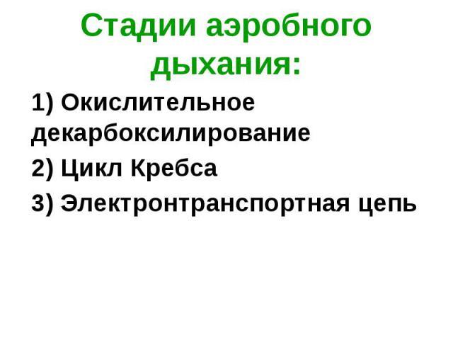 Стадии аэробного дыхания: 1) Окислительное декарбоксилирование 2) Цикл Кребса 3) Электронтранспортная цепь