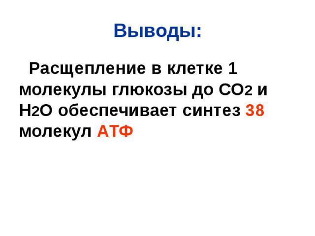 Выводы: Расщепление в клетке 1 молекулы глюкозы до СО2 и Н2О обеспечивает синтез 38 молекул АТФ