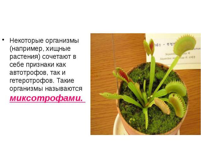Некоторые организмы (например, хищные растения) сочетают в себе признаки как автотрофов, так и гетеротрофов. Такие организмы называются миксотрофами. Некоторые организмы (например, хищные растения) сочетают в себе признаки как автотрофов, так и гете…