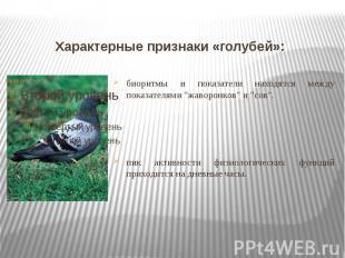 Характерные признаки «голубей»: биоритмы и показатели находятся между показателя