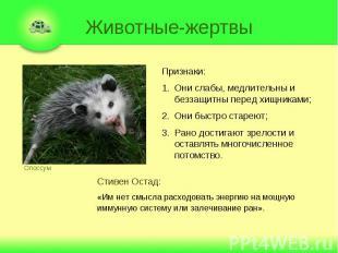 Животные-жертвы