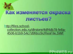 http://files.school-collection.edu.ru/dlrstore/4df4db78-fe8a-4506-b1b9-54c7d9fdc