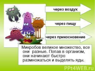 Микробов великое множество, все они разные. Попав в организм, они начинают быстр