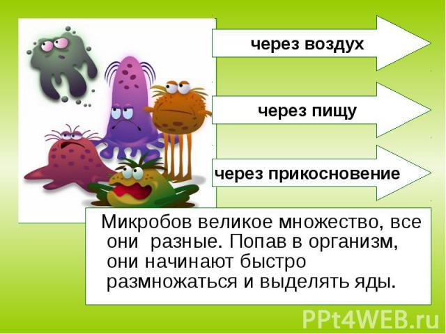 Микробов великое множество, все они разные. Попав в организм, они начинают быстро размножаться и выделять яды. Микробов великое множество, все они разные. Попав в организм, они начинают быстро размножаться и выделять яды.