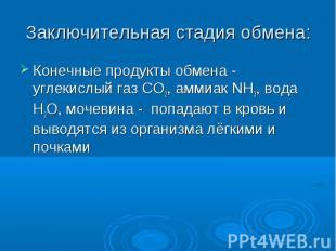 Конечные продукты обмена - углекислый газ СО2, аммиак NH3, вода Н2О, мочевина -