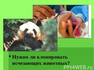 Нужно ли клонировать исчезающих животных? Нужно ли клонировать исчезающих животн