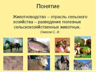 Понятие Животноводство – отрасль сельского хозяйства – разведение полезных сельс