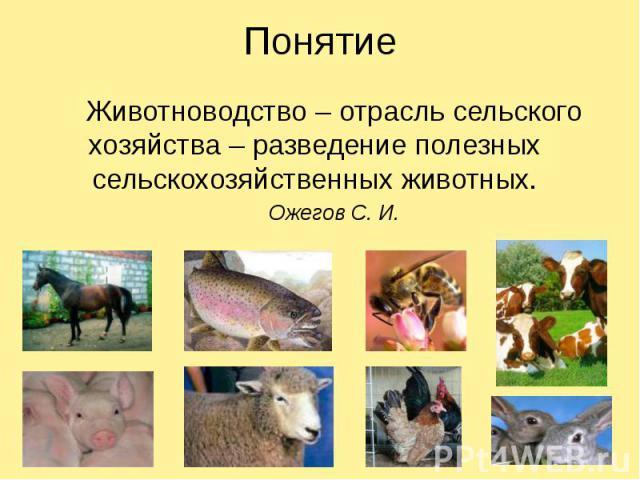 Понятие Животноводство – отрасль сельского хозяйства – разведение полезных сельскохозяйственных животных. Ожегов С. И.