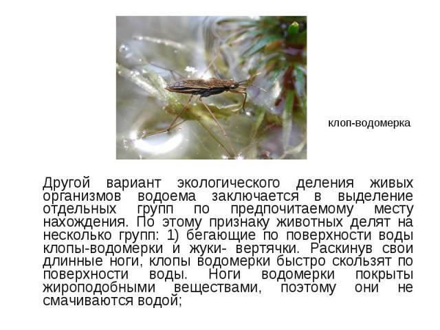 Другой вариант экологического деления живых организмов водоема заключается в выделение отдельных групп по предпочитаемому месту нахождения. По этому признаку животных делят на несколько групп: 1) бегающие по поверхности воды клопы-водомерки и жуки- …