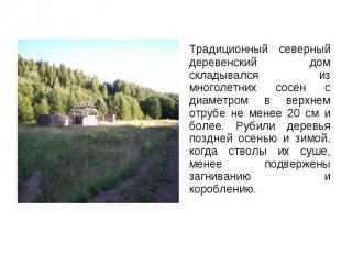 Традиционный северный деревенский дом складывался из многолетних сосен с диаметр