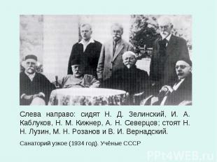 Слева направо: сидят Н. Д. Зелинский, И. А. Каблуков, Н. М. Кижнер, А. Н. Северц