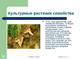 СОЯ - род однолетних трав семейства бобовых. 10 видов, во влажных тропиках и суб