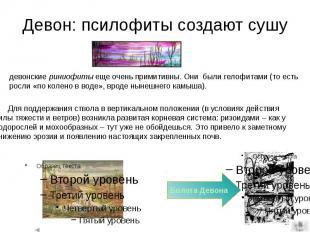 Девон: псилофиты создают сушу Для поддержания ствола в вертикальном положении (в