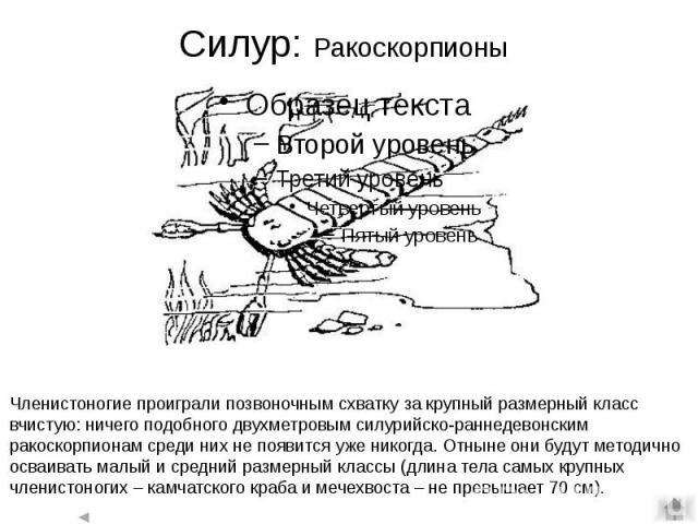 Силур: Ракоскорпионы