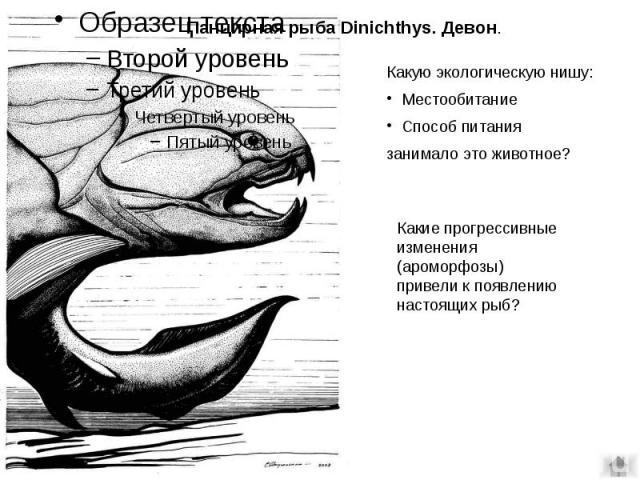 Панцирная рыба Dinichthys. Девон.