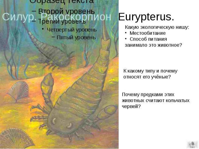 Силур. Ракоскорпион Eurypterus.