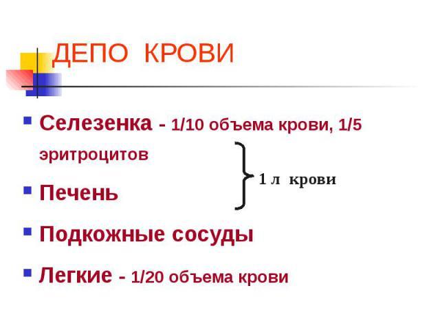 ДЕПО КРОВИ Селезенка - 1/10 объема крови, 1/5 эритроцитов Печень Подкожные сосуды Легкие - 1/20 объема крови