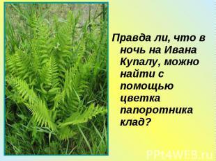 Правда ли, что в ночь на Ивана Купалу, можно найти с помощью цветка папоротника