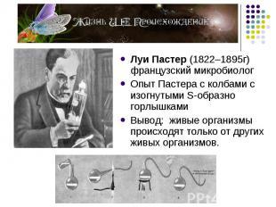 Луи Пастер (1822–1895г) французский микробиолог Луи Пастер (1822–1895г) французс