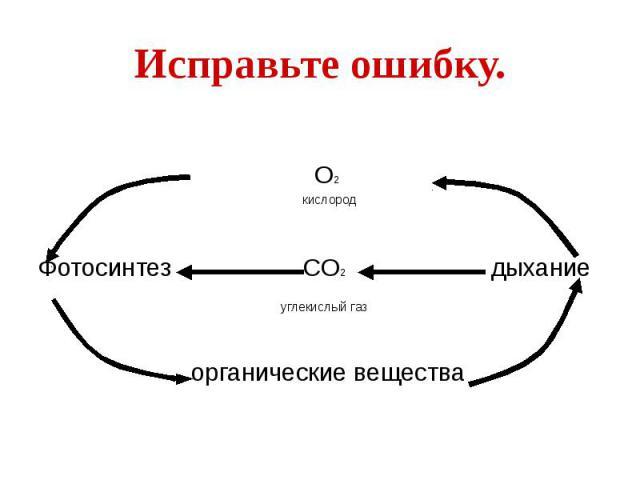 Исправьте ошибку. О2 кислород Фотосинтез СО2 дыхание углекислый газ органические вещества
