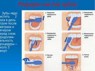 Порядок чистки зубов Зубы надо чистить 2 раза в день: утром после завтрака и веч