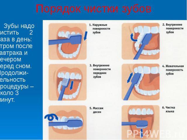 Порядок чистки зубов Зубы надо чистить 2 раза в день: утром после завтрака и вечером перед сном. Продолжи-тельность процедуры – около 3 минут.