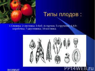 Типы плодов : 1.Семянка; 2-листовка; 3-боб; 4-стручок; 5-стручочек; 6,8,9-коробо