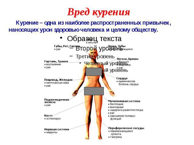 Вред курения Курение – одна из наиболее распространенных привычек, наносящих урон здоровью человека и целому обществу.