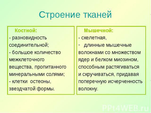 Костной: Костной: - разновидность соединительной; - большое количество межклеточного вещества, пропитанного минеральными солями; - клетки остеоны, звездчатой формы.