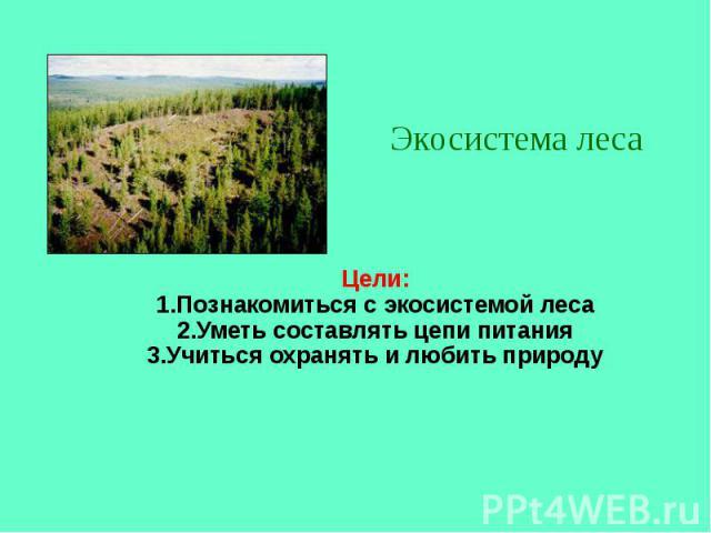 Цели: 1.Познакомиться с экосистемой леса 2.Уметь составлять цепи питания 3.Учиться охранять и любить природу