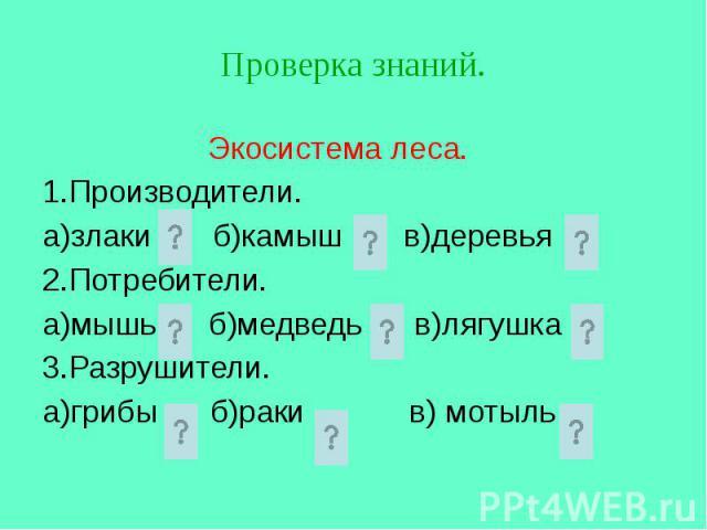 Экосистема леса. 1.Производители. а)злаки б)камыш в)деревья 2.Потребители. а)мышь б)медведь в)лягушка 3.Разрушители. а)грибы б)раки в) мотыль