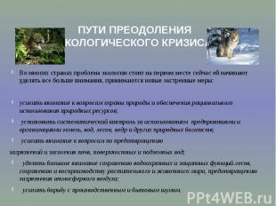 ПУТИ ПРЕОДОЛЕНИЯ ЭКОЛОГИЧЕСКОГО КРИЗИСА Во многих странах проблема экологии стои