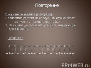 Письменное задание (в тетради): Письменное задание (в тетради): Полипептид состо
