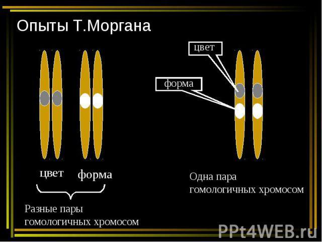 Опыты Т.Моргана