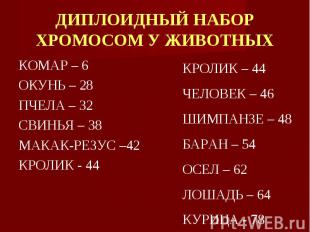 КОМАР – 6 КОМАР – 6 ОКУНЬ – 28 ПЧЕЛА – 32 СВИНЬЯ – 38 МАКАК-РЕЗУС –42 КРОЛИК - 4