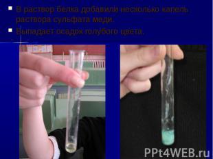 В раствор белка добавили несколько капель раствора сульфата меди. В раствор белк