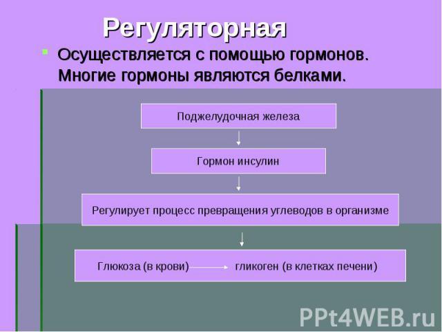 Осуществляется с помощью гормонов. Многие гормоны являются белками. Осуществляется с помощью гормонов. Многие гормоны являются белками.