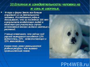 10.Влияние жизнедеятельности человека на жизнь животных. Флора и фауна Земли все